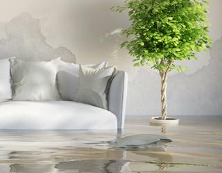 agi24 wir k mmern uns um die behebung und sanierung von wasser und brandsch den. Black Bedroom Furniture Sets. Home Design Ideas